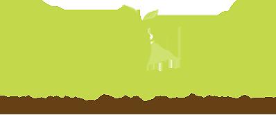 Vitality Superfood logo