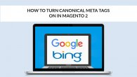 Canonical Meta Tags in Magento 2